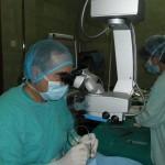 dr martinovic